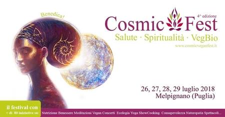 cosmicfest (grande)